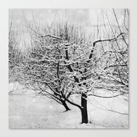 Blankets Of Snow Canvas Print
