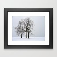 Three Trees In Winter Framed Art Print