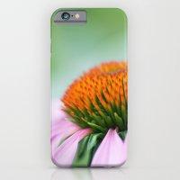 Cone Flower iPhone 6 Slim Case
