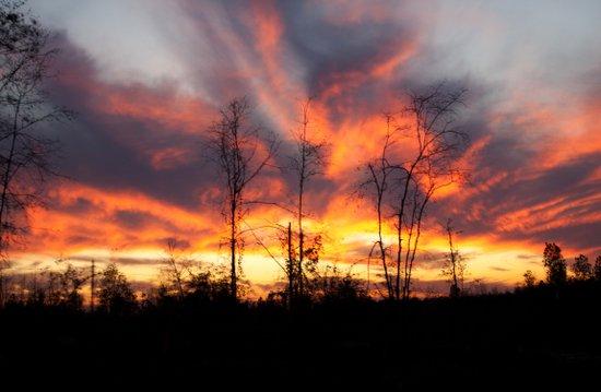 South Georgia Sky on Fire 3 Art Print