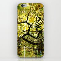 The Dense Forest Of Imag… iPhone & iPod Skin