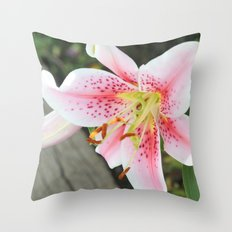 Remembering Summer Throw Pillow