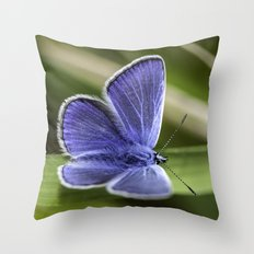 Beautiful Blue Throw Pillow