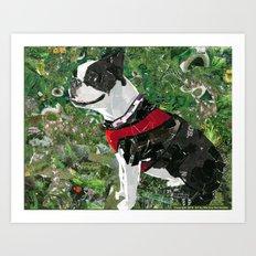 Mugsy The Boston Terrier Art Print