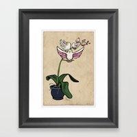 THE RARE SONGBIRD ORCHID Framed Art Print