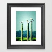 3 sea guls Framed Art Print