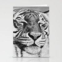 Sleepy Tiger Stationery Cards