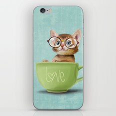 Kitten with glasses iPhone & iPod Skin