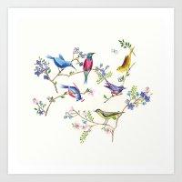 Birds  Art Print