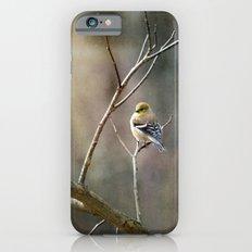 Morning Goldfinch iPhone 6 Slim Case
