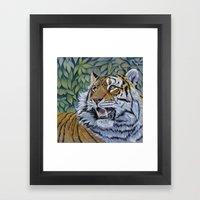 Tiger 807 Framed Art Print