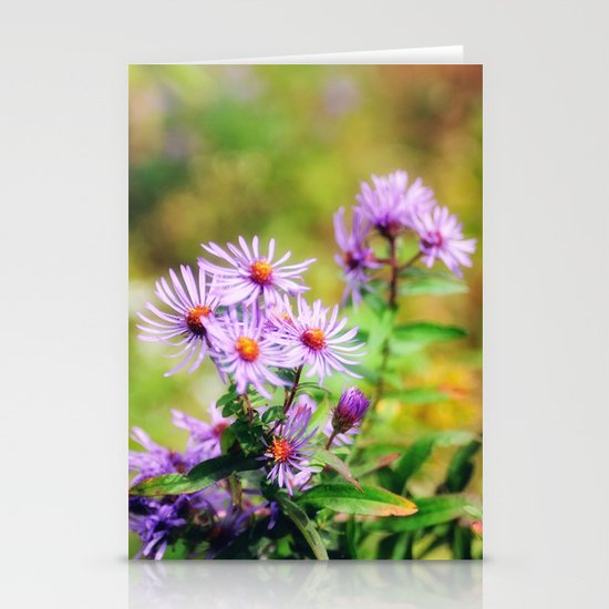 Purple Aster Stationery Card