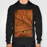 Fall Leaf III Hoody
