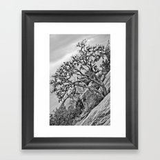 Enchanted Rock Framed Art Print