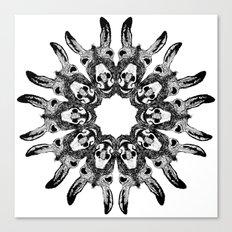 Donkey Kaleidoscope  Canvas Print