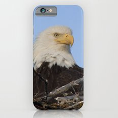 Eagle's Nest Slim Case iPhone 6s