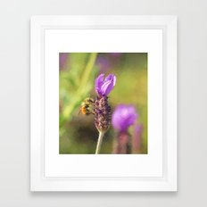 Beehold Framed Art Print