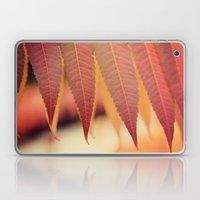 Fiery Fall Laptop & iPad Skin