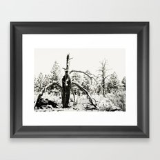 Volcanic Aftermath Framed Art Print