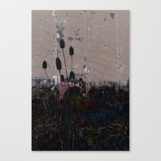TEASEL I Canvas Print