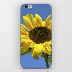 summer sunflower V iPhone & iPod Skin