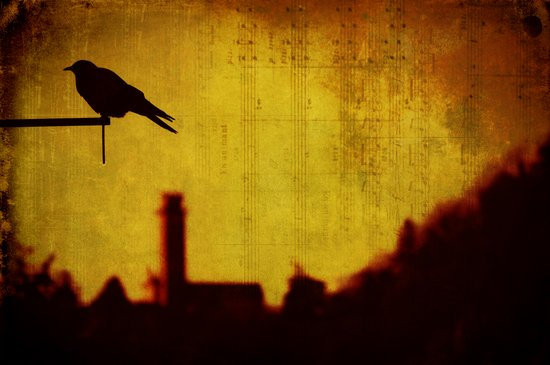 Crow and castle with music sheet Art Print