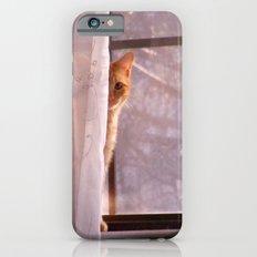 hi iPhone 6 Slim Case