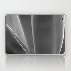 Agave Laptop & iPad Skin