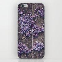 Lilac world map iPhone & iPod Skin