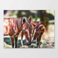 Horse Kisses Canvas Print