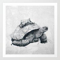 Tortoise Tree - Fall Art Print