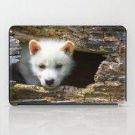Peek-a-boo iPad Case