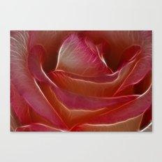 Pretty Rose Canvas Print