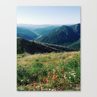 Gifford Pinchot National Forest Canvas Print