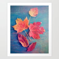 The Colors of Autumn Art Print