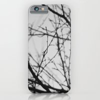 January Tree iPhone 6 Slim Case