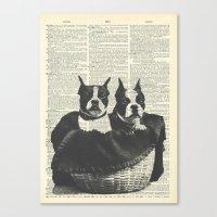 Boston Terriers In A Bas… Canvas Print