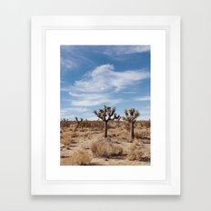 Joshua Tree National Park, CA Framed Art Print