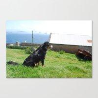 Watchdog Canvas Print