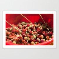Wild Strawberries  4119 Art Print