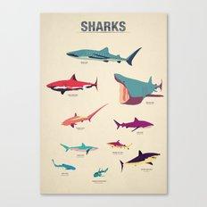 Sharks Canvas Print