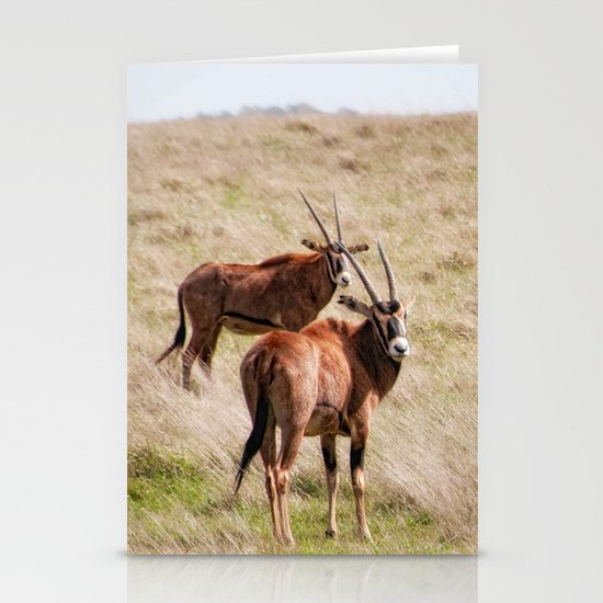 Wide open spaces Stationery Card