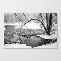 At Water's Edge Canvas Print