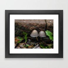 Mushroom Mushroom Framed Art Print