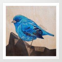 Indigo Bunting Art Print