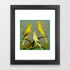 Canaries with Dots Framed Art Print