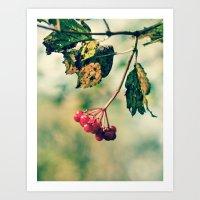 Berry Berry Me  Art Print