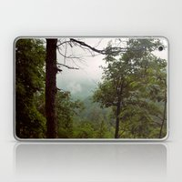 Smoky Mountains Tennessee Tree Color Photograph Laptop & iPad Skin