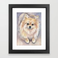 Pomeranian Watercolor Pom Painting Framed Art Print
