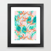 Birds Of Paradise Blush Framed Art Print